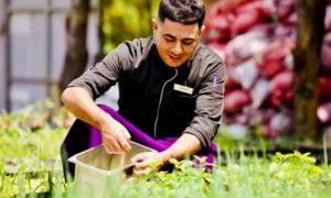 Italian chef offers regional cuisine with Phu Quoc Island twist