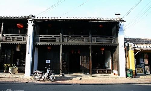 Termites threaten Hoi An ancient town