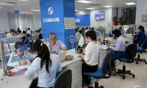 Eximbank seeks to pay dividends after 7 years