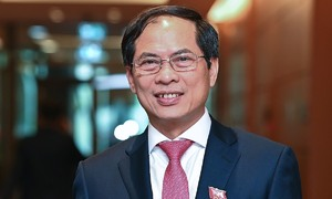 Bui Thanh Son is Vietnam's new foreign minister