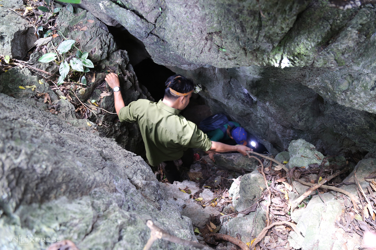 Underground stream discovered in Quang Tri cave