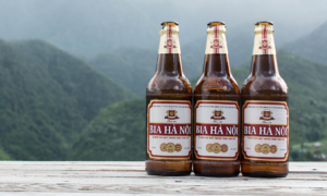 Hanoi Beer producer profits to slump to 10-year low