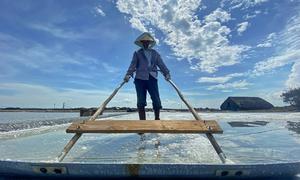 Salt harvest hits HCMC's solo island commune