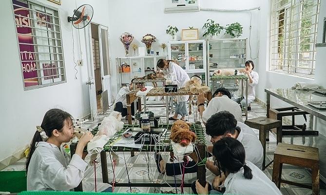 Vans students work at the clinic. Photo by VnExpress/Nguyen Ngoan.