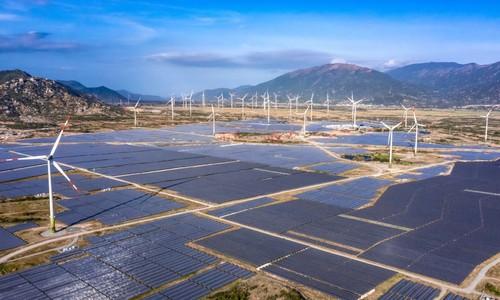 Vietnam's largest wind power plant enters operation