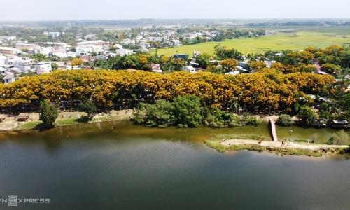 Legume trees allure visitors to central Vietnam village