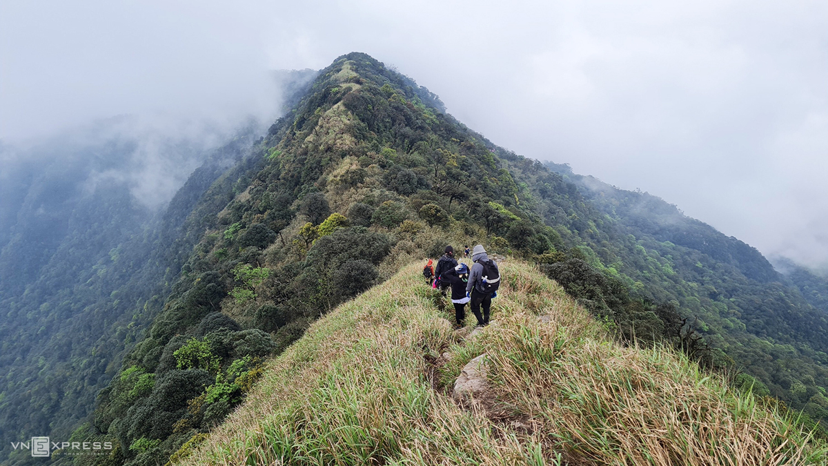 The last stretch to reach the top of Phia Po resembles the back of a giant dinosaur, covered by shrubs, tall grass, and trees. During rainy days, visitors can enjoy a sea of clouds from here.