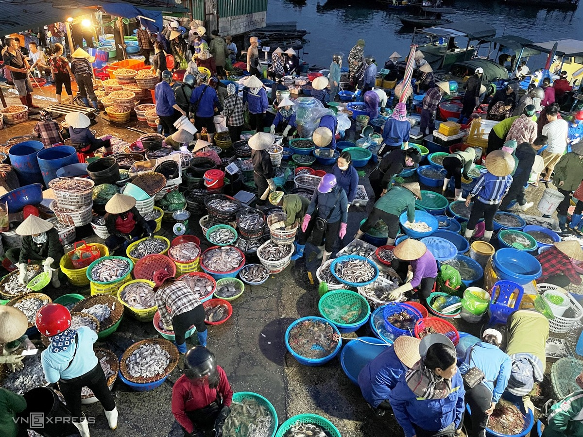When the clock strikes one, a fish market wakes up