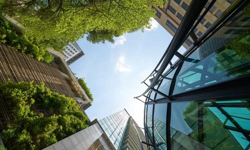 Green bonds pique Vietnamese investor interest