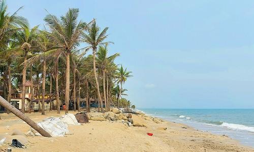 Cua Dai Beach: pandemic rubs salt into erosion wound