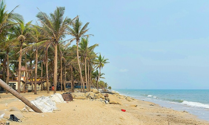 Cua Dai Beach: pandemic rubs salt into erosion wound