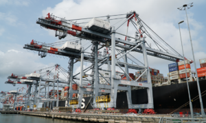 Exports to US surge 50 pct