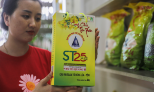 Vietnam fights US company trying to steal its ST25 rice brand patent