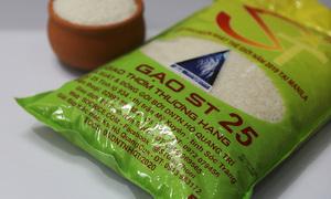 Australian firm seeks patent for Vietnam rice variety