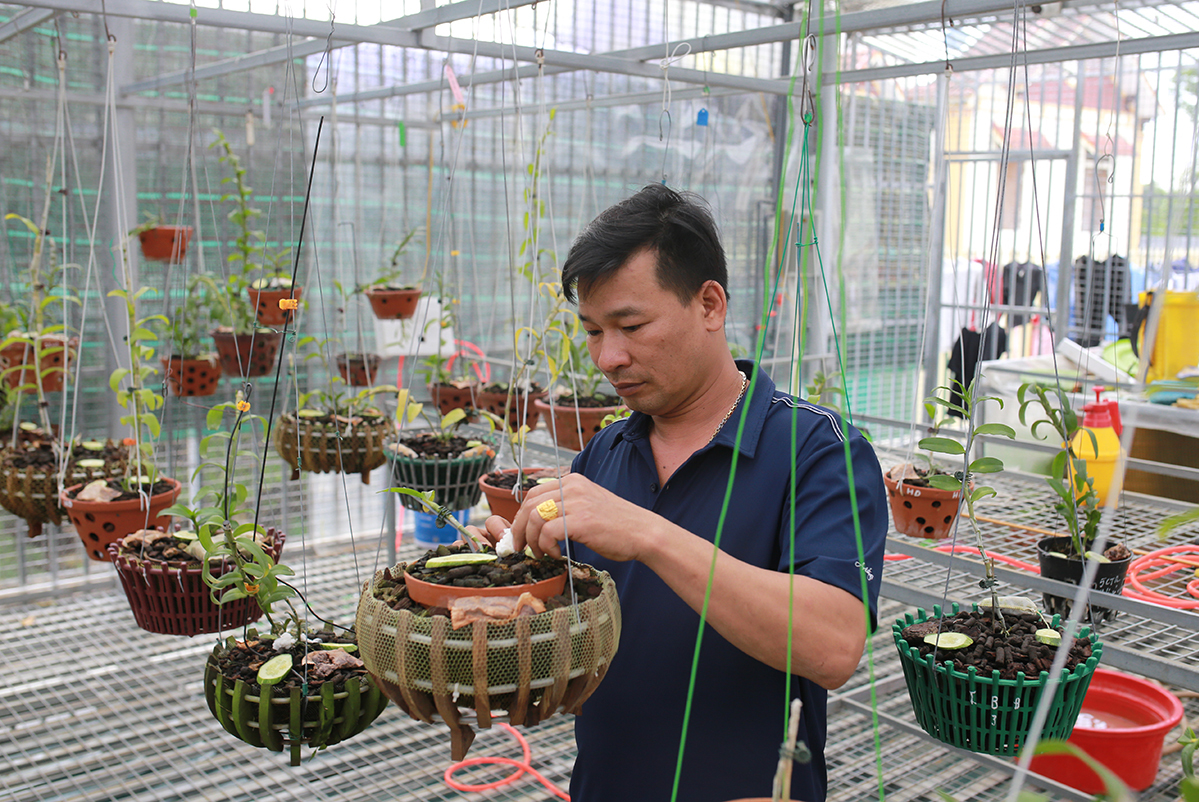 Tran Van Tai and his orchid garden in northern Hoa Binh Province. Photo by VnExpress/Tat Dinh.