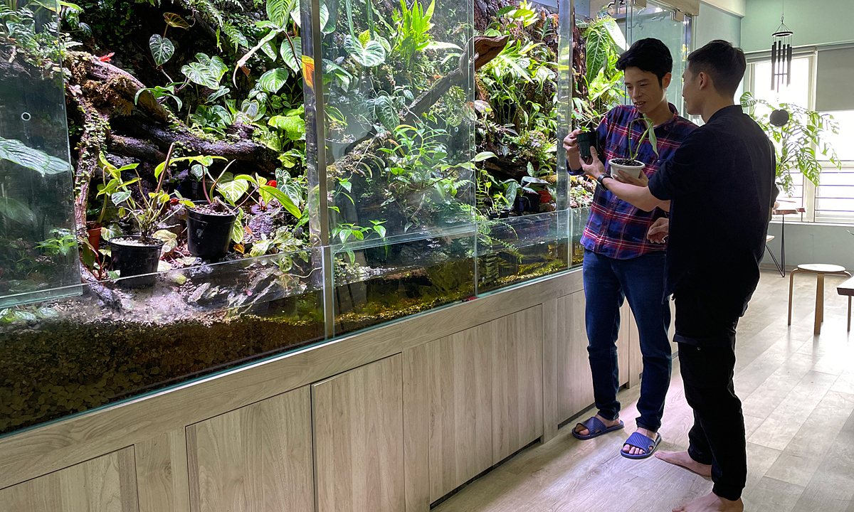 Loi (L) and a paludarium that has hundreds of houseplants. Photo by VnExpress/Phan Duong.
