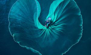 Vietnamese photographer wins int'l contest with shot of Phu Yen fishermen