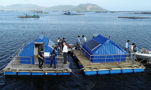 Australia-Vietnam development program enables innovation