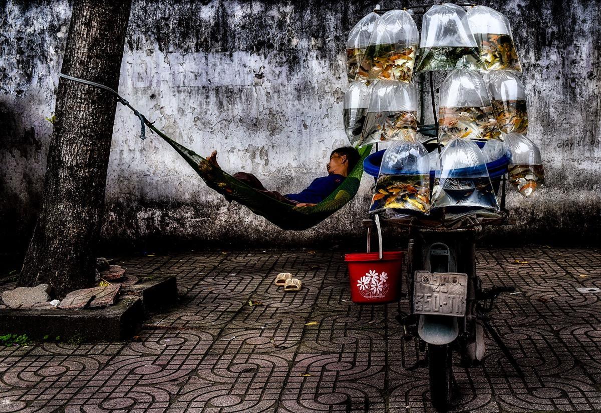 Giac Mo Pho by Ninh Manh Thang. Photo courtesy of Ninh Manh Thang.
