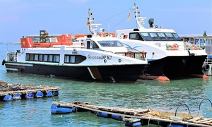 HCMC suspends high-speed boat services to Vung Tau, Can Gio