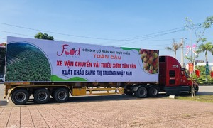 Vietnam exports 20 tons of lychees to Japan