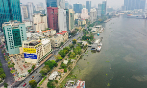 HCMC to remove 178 trees for park renovation
