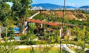Four green cafes in Nha Trang beach town