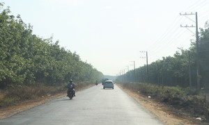 Southeastern province to spend $195 mln on new roads, upgrades
