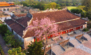 Excavation to assess state of crumbling Hue royal palace