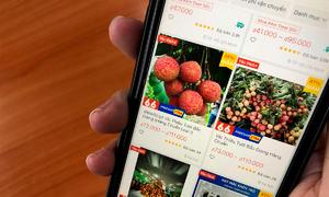 E-commerce a distribution avenue for fresh fruits amid pandemic