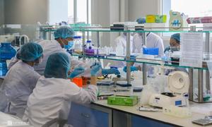 Vingroup sets up drug company