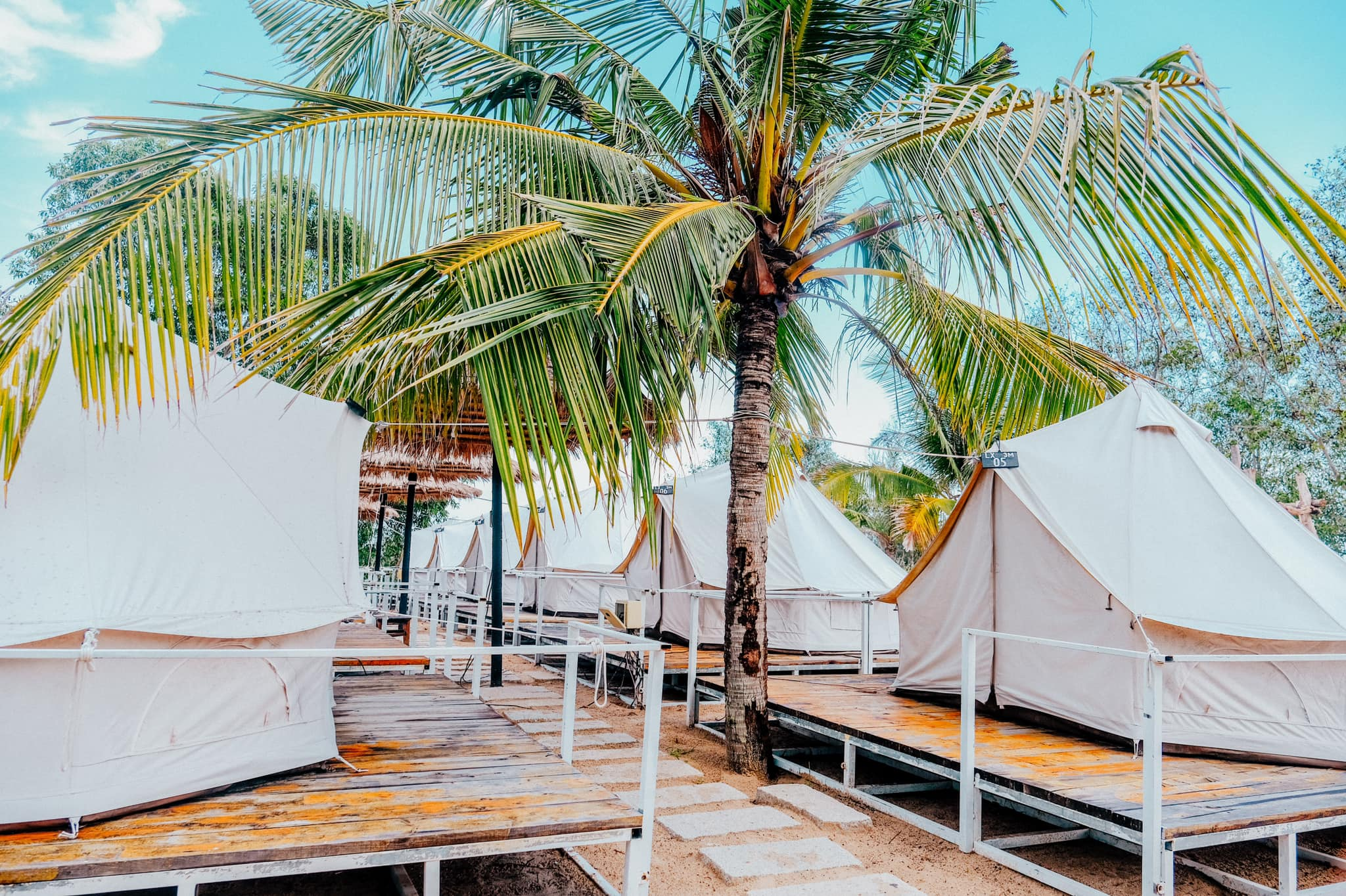 White tents are surrounded by coconut trees at Coco Beachcamp Lagi in Binh Thuan Province. Photo courtesy of Coco Beachcamp Lagi.