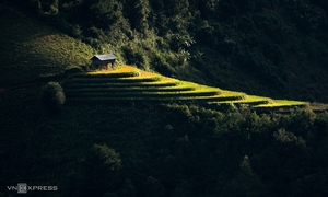 Beauty of solitude central to Vietnam photo series