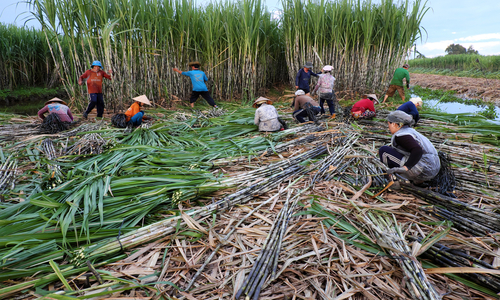 Vietnam imposes anti-dumping and countervailing duty on Thai sugar