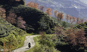 Lonely Planet lists Vietnam among top 10 solo travel destinations