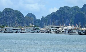 Quang Ninh throws open Ha Long Bay for free to bring back tourists