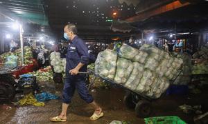 HCMC extends closure of Hoc Mon wholesale market