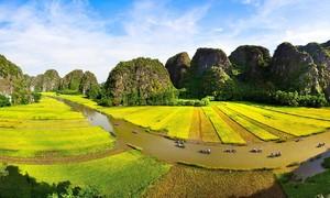 Hanoi-Ninh Binh tour among world's best nature activities: Tripadvisor
