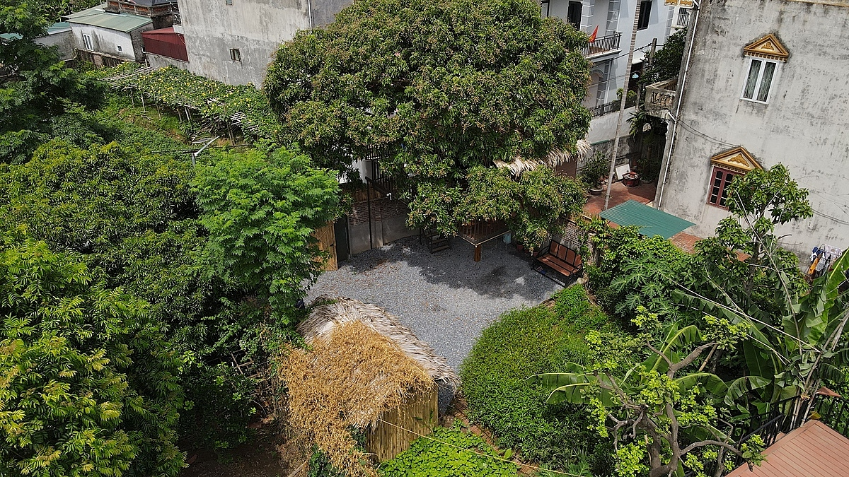 During his spare time while following social distancing last December, the Hanoian engineer said he came up with the idea to build a treehouse tucked under his 30-40-year-old longan tree on his 300-square-meter estate in Xuan Canh Commune.