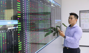 Record spree continues in new securities trading accounts