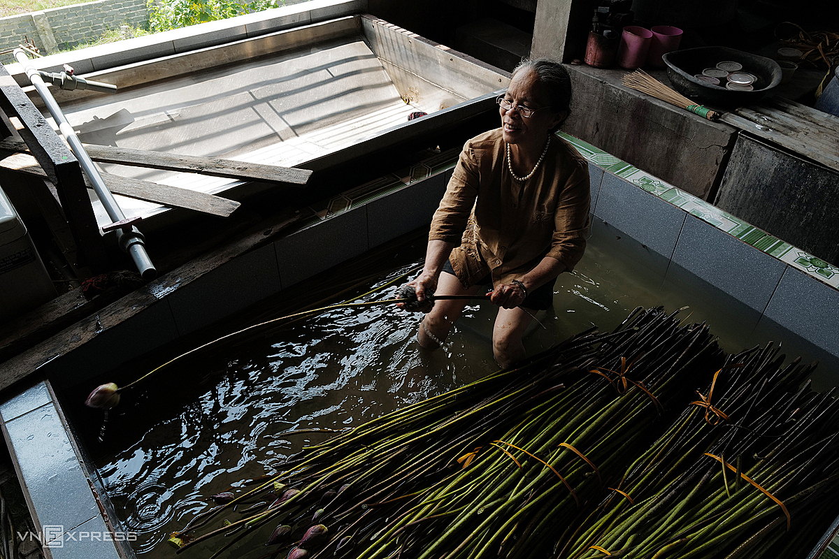 Each stem has to be washed to remove the mud and get rid of thorns before the spinning can begin. In 2017 Thuan first started researching into lotus silk, but the quality of the final product did not satisfy her. (YOU TAKE A BIG LEAP HERE! WHAT HAPPENED IN BETWEEN)She says: Two years later I managed to put the lotus silk products out on the market. But since the production is labor intensive and time consuming, only silk connoisseurs use it or buy it.(Khoa: TV có vậy nên e dịch vậy th, nên cũng ko biết chuyện gì xảy ra trong 2 năm để trả lời bác.)