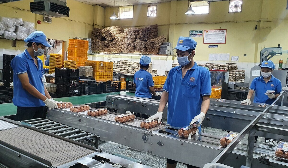 Workers at Vfood Company's egg production line work two meters away from each other. Photo courtesy of Vfood.