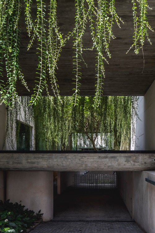 The idea was to create a living space above a garden, giving occupants a feeling of walking along abridge. Architects tried to create a large garden intertwined with the house instead of having a few small green areas. To do this they had to eliminate unnecessary space and furniture.
