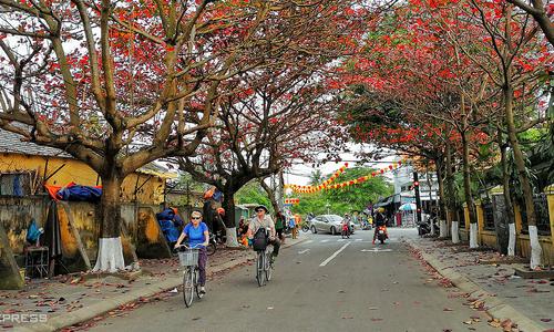 Hoi An among South Koreans' favorite cycling destinations