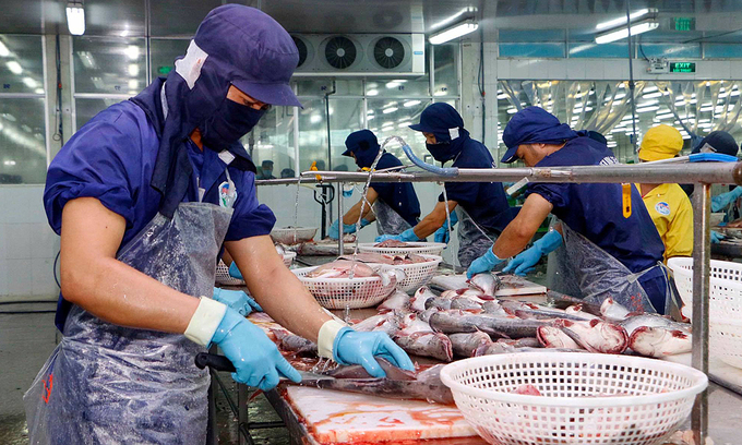Seafood firms net big catch from export recovery