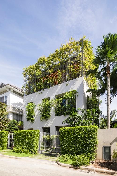 A green facade defuses the intense sunshine.