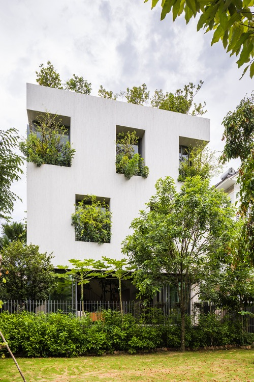 This house is one of the latest projects in a housing series called House for Trees by VTN Architects. It was honored at the Architizer's A+Awards 2021, DFA Design for Asia Awards 2020, Dezeen Awards 2019, and FuturArc Green Leadership Award 2019.