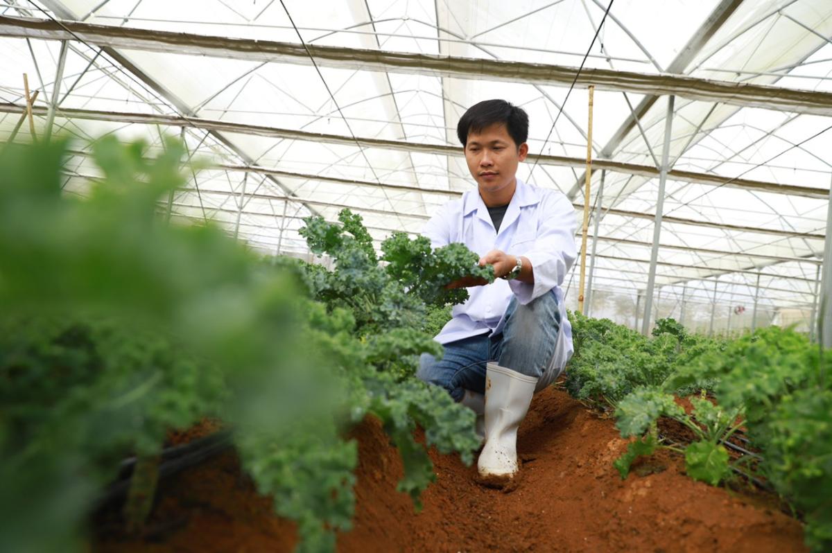 CEO 8x bền bỉ chinh phục thảo dược suốt 11 năm. Ảnh: NVCC.