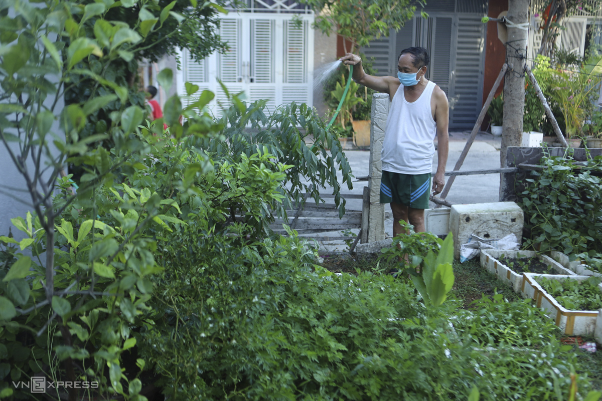 Nguyen Van Binh, 61, in Phuoc Long Ward waters his family's vegetable garden. After three tests in a row, there has been no infections found in his neighborhood. There, his neighbors have decided to isolate the entire area to limit anyone from outside and protect the community in this area from any possible Covid-19 risks.