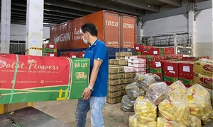 Covid-19 keeps logistics firms busy, but undelivered orders pile up